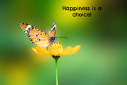 happiness-is-a-choice1